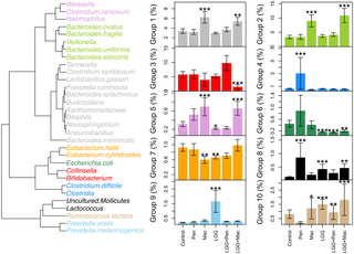 Lactobacillus rhamnosus GG Intake Modifies Preschool Children's Intestinal Microbiota, Alleviates Penicillin-Associated Changes, and Reduces Antibiotic Use
