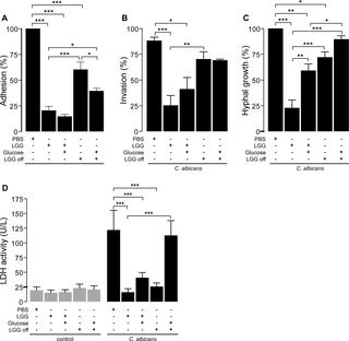 Antifungal defense of probiotic Lactobacillus rhamnosus GG is mediated by blocking adhesion and nutrient depletion