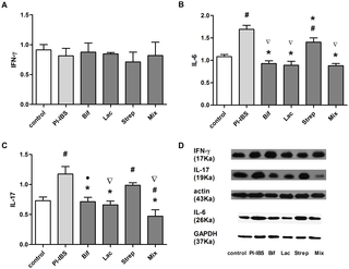 Are There Any Different Effects of Bifidobacterium, Lactobacillus and Streptococcus on Intestinal Sensation, Barrier Function and Intestinal Immunity in PI-IBS Mouse Model?